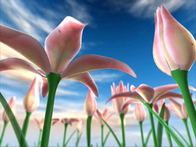 Flowers Meadow 3D Screensaver 1.0 screenshot